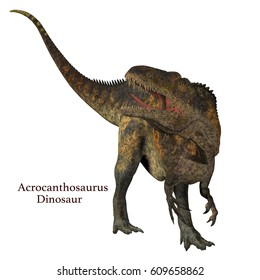 Acrocanthosaurus Dinosaur Tail with Font 3d illustration - Acrocanthosaurus was a carnivorous theropod dinosaur that lived in North America in the Cretaceous Period.