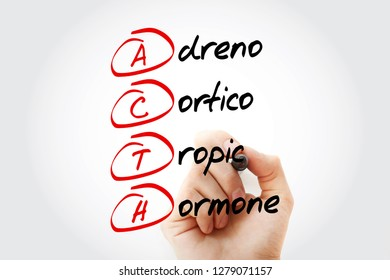 ACTH - Adrenocorticotropic hormone acronym with marker, concept background
