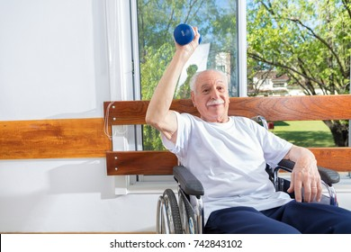 Active elderly people rehab with weights.
