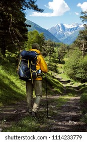 Active healthy man with backpack hiking in beautiful forest