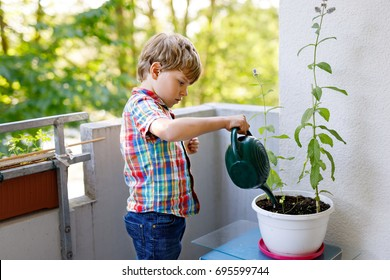 Active little preschool kid boy watering plants with water can at home on balcony. little child helping arents to grow herbs and flowers. Happy preschool kid