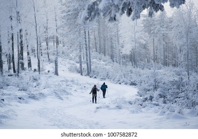 Active people on the mountain winter road
