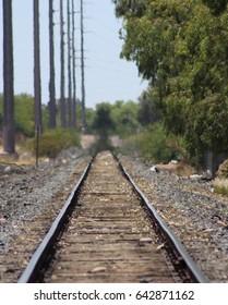 active rail