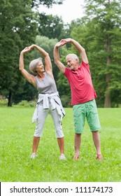 Active senior couple in the park doing gymnastics