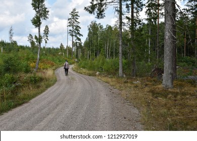 Active senior walks on a gravel road through a beautiful forest