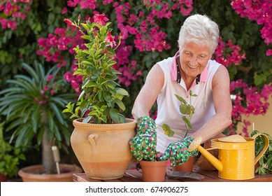 active senior woman gardening potting plants