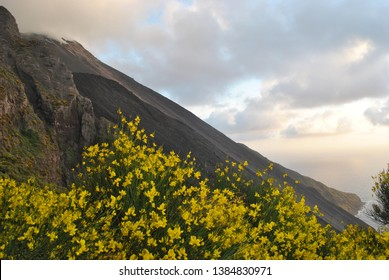 Active Vulcano Stromboli with lava