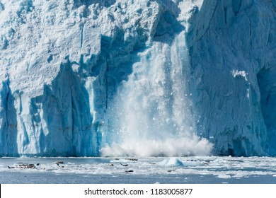 An Actively Calving Glacier with Wildlife at its foot