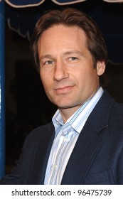 Actor DAVID DUCHOVNY at the Los Angeles premiere of Fun With Dick and Jane. December 14, 2005  Los Angeles, CA.  2005 Paul Smith / Featureflash