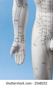 Acupuncture figure - front right aspect