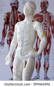 acupuncture figure with poster at background