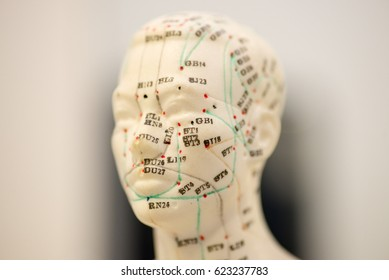 acupuncture head points