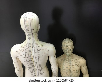 Acupuncture point models on black screen background for Traditional Chinese Medicine (针灸治疗 / 针灸模型 / 繁体中文)