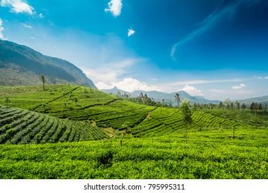 Adams peak also known as Sri pada in Sri Lanka over the Maskeliya reservoir