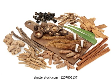 Adaptogen food collection with herbs and spices. Used in herbal medicine to help the body resist the damaging effect of stress and restore normal physiological functioning. On white background.
