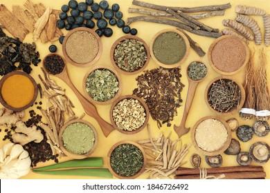 Adaptogen Health Food mit Kräutern, Gewürzen und Zusatzpulver. Natürliche pflanzliche Lebensmittel, die dem Körper helfen, mit Stress umzugehen und normale physiologische Funktionen zu fördern oder wiederherzustellen. Draufsicht auf Gelb.