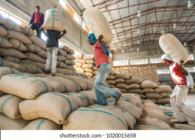 Addis Ababa, Ethiopia, 01/30/2014 Workers carrying large bags of raw coffee beans, Men stacking large bags of coffee beans in a warehouse