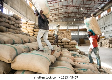 Addis Ababa, Ethiopia - January 30 2014: Men stacking large bags of coffee beans in a warehouse