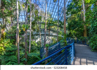 Adelaide Australia 17 May 2015 The Bicentennial Conservatory is in the Adelaide Botanical Gardens