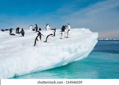 Adelie penguins and aquamarine water, Antarctica
