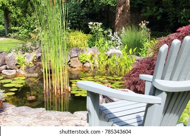 Adirondack chair at a public park goldfish pond with water lilies.