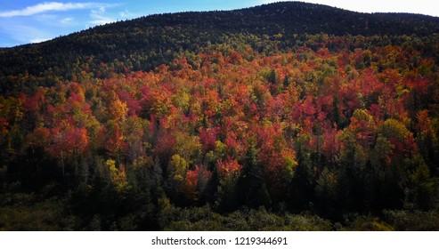 Adirondack's Autumn Skies
