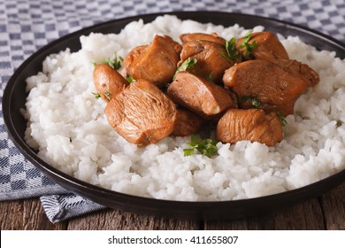 Adobo Chicken with a side dish of rice close-up on a plate. horizontal