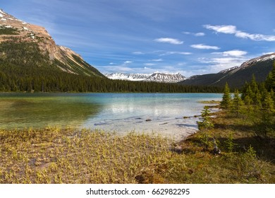 Adolphus Lake on North Boundary Hiking Trail near Robson Pass in Jasper National Park, Canadian Rocky Mountains