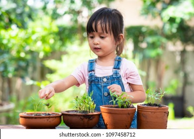 Adorable 3 years old asian little girl is pointing and looking the plant  in the pots outside the house, concept of plant growing learning activity for preschool kid.