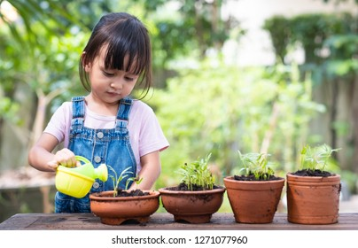 Adorable 3 years old asian little girl is watering the plant  in the pots outside the house, concept of plant growing learning activity for preschool kid.