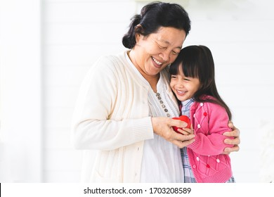 Adorable asian little girl is playing and hugging her grandmother with fully happiness moment, concept of love and bonding of multi generation in asian family lifestyle.