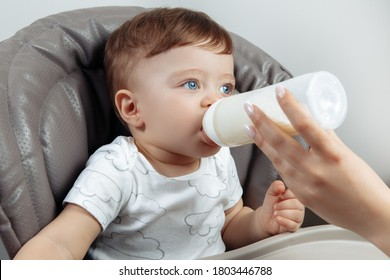 Adorable baby boy drink milk in high chair. Mothers hand with bottle of milk