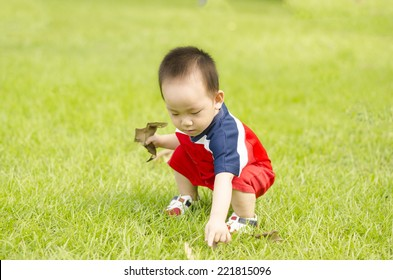 Adorable baby boy pick leaf up on the grass