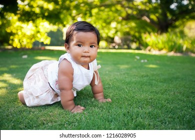 Adorable baby girl learning to crawl in a beautiful park with green grass