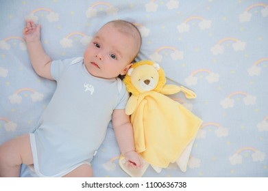 Adorable baby lying in bed with lion toy view from above. Nursery for children. Playtime with kids. Family morning at home.