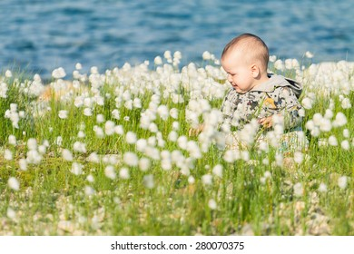 Adorable baby sitting and crying in the cotton grass with a lake in the background