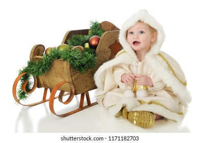 """An adorable baby """"snow princess"""" happily sitting beside her rustic sleigh filled with green Christmas garland and bulbs.  On a white background."""