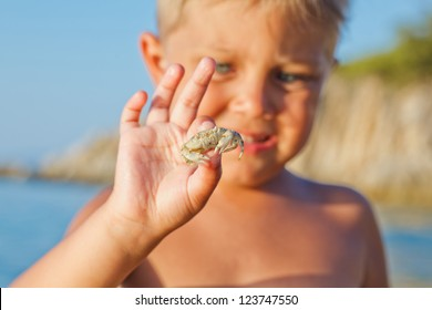 Adorable boy holding crab on hand on the beach. Focus on the crab.