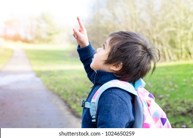 Adorable boy pointing his finger up to the sky with bright light of the sun in the morning, Kid playing around grass field in the hot sunny day on summer, Active boy looking up with curious face.