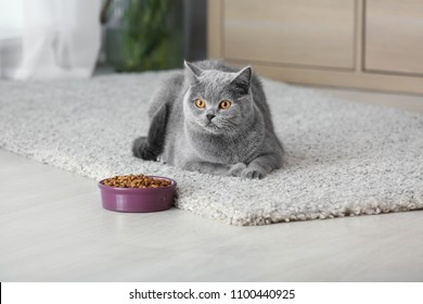 Adorable cat near bowl with food at home