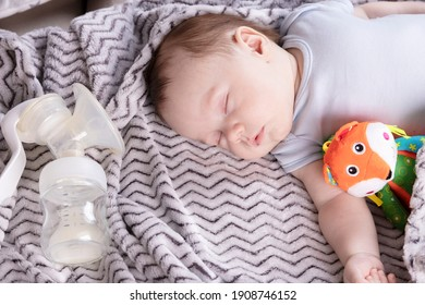 Adorable child, with a favorite toy, sleeps relaxed and sprawls on the parents' bed