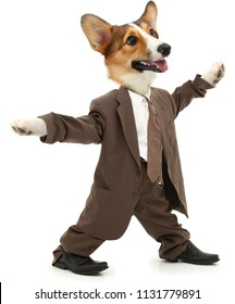 Adorable Corgi Businessman Dog in Baggy Business Suit.