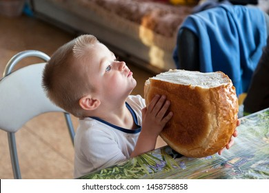 Adorable cute impatient baby boy is sitting near table and holding huge loaf of white bread wanting to bite it on sunny morning during breakfast