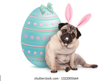 adorable cute pug puppy dog sitting down next to pastel colored easter egg, wearing bunny ears and teeth, isolated on white background