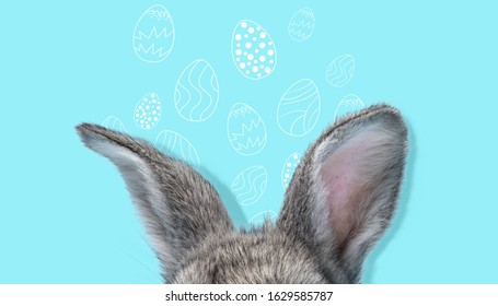 Adorable Easter bunny isolated on blue studio background, flyer for your ad. Cute ears of hidden animal with painted eggs. Greeting card. Concept of holidays, spring, celebrating. Modern design.