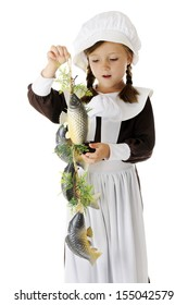 An adorable elementary Pilgrim girl admiring the catch of fish she'll be preparing for the first Thanksgiving feast.  On a white background.