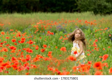 Adorable girl 6 years old wearing a hat in a bright poppy field. Portrait of a cute girl with long curly hair against summer field full of red poppies.