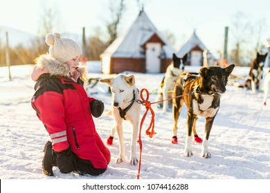 Adorable girl having a cuddle with husky sled dog in a farm in Northern Norway