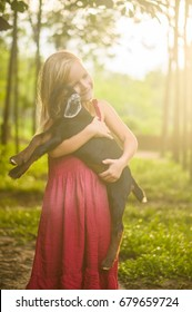 Adorable girl in park hold small beautiful baby goat on sunset