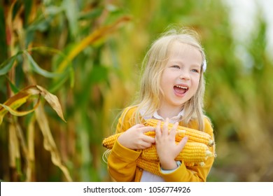 Adorable girl playing in a corn field on beautiful autumn day. Pretty child holding a cob of corn. Harvesting with kids. Autumn activities for children.